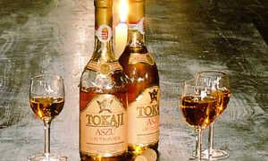 Особенности венгерского вина