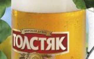 Обзор пива Толстяк