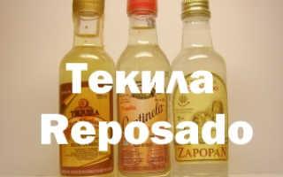 Текила Репосадо и ее особенности