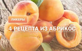 Как приготовить абрикосовый ликер в домашних условиях