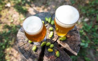 Что такое IBU в пиве