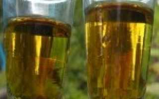 Болгарская водка (ракия): что это за напиток