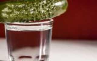 Рецепт приготовления браги из муки